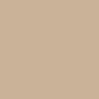 Mojave - Formica ColorCore2