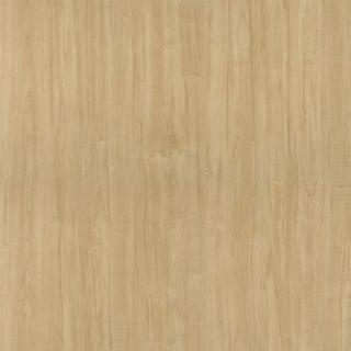 Danish Maple