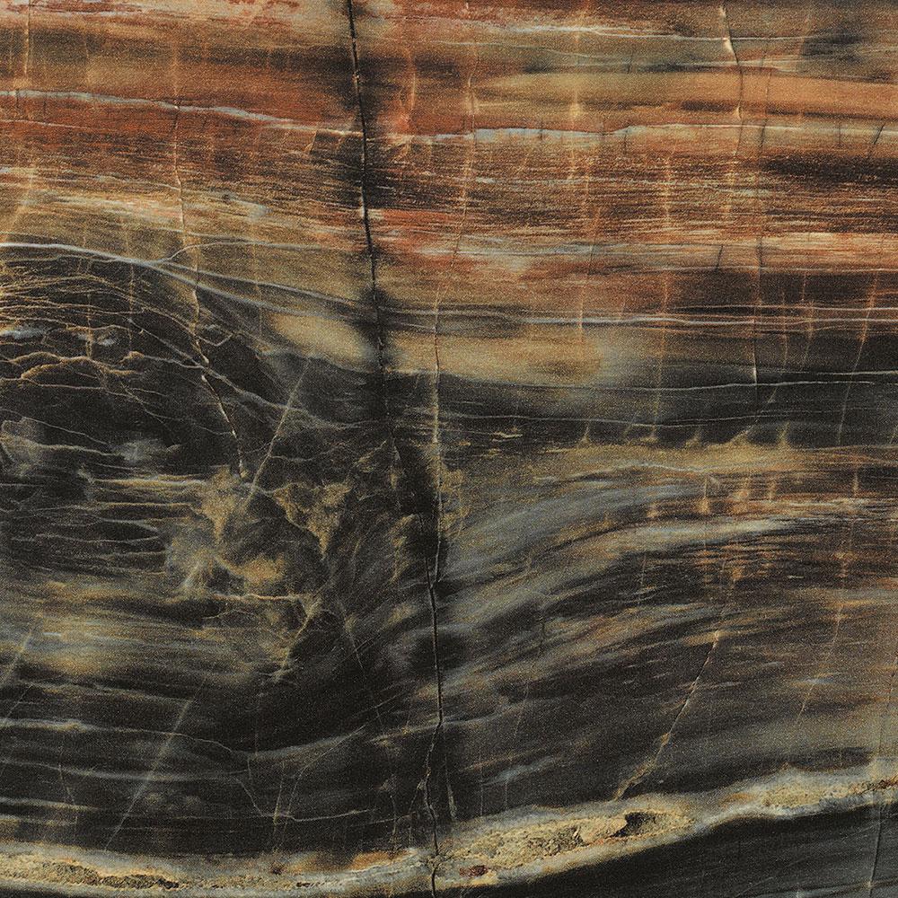 Petrified Wood Formica laminate sheet