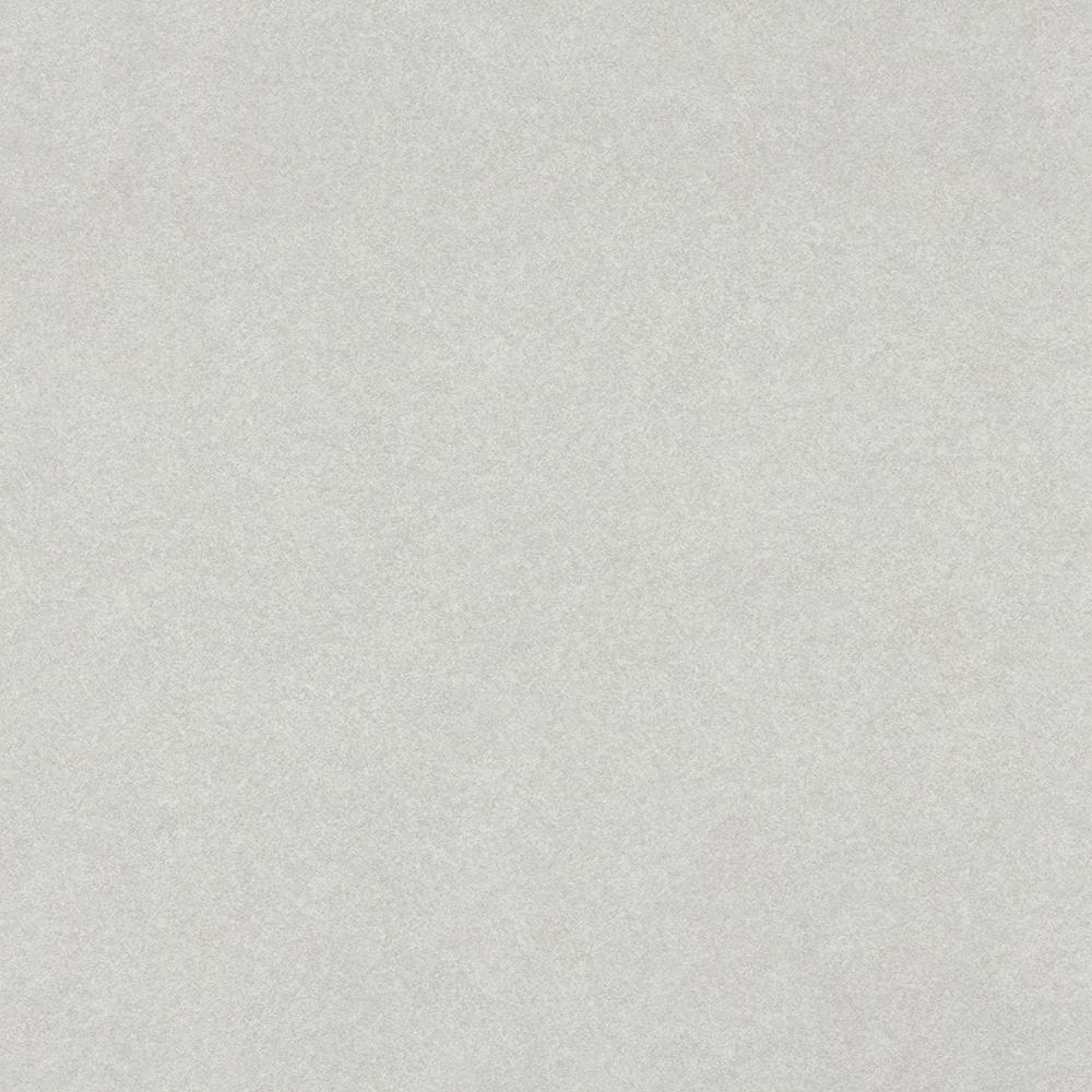 Grey Pampas