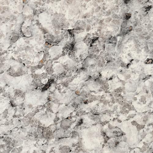 6697-argento-romano