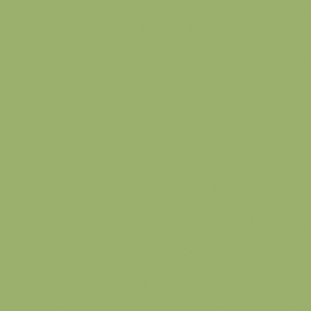 Green Laminate: Leaf Green, Vertical Grade, Gloss Laminate Sheet, 4' X 10