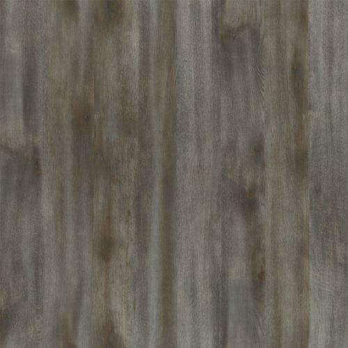 Umbra Oak