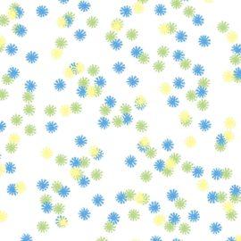 Field Daisy