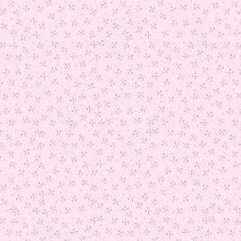 Pink Compre