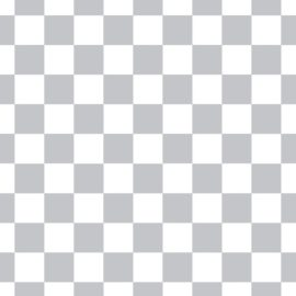 Checkered Slacks
