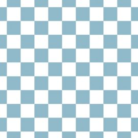 Checkered Sky
