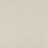 th2_c.220.2-4170-beige-pampas.png