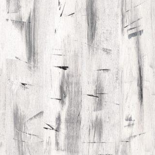 Lace Gesso Wood