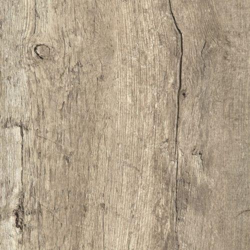 Rediscovered Oak