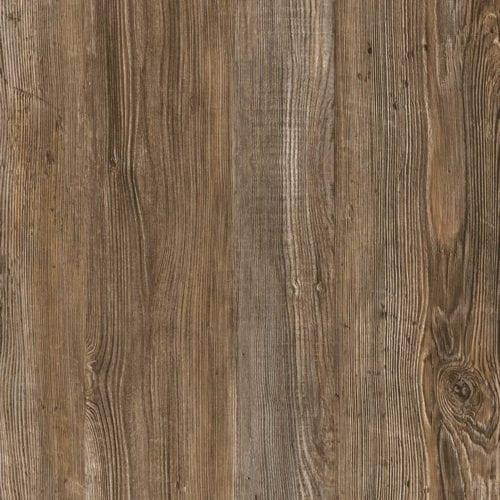 Lost Pine